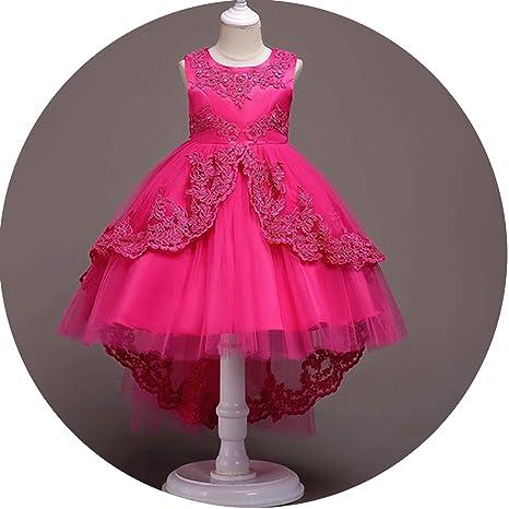 Amazon Com Flower Girls Dress Kids Princess Party Wedding Gowns