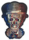 A Iron on Patches, Skeleton, Iron on Patches, Embroidery Patterns, Patches for Jackets (Colorful Skeleton, multicolor)