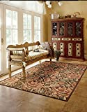 """Nourison Graphic Illusions  Brown Rectangle Area Rug, 7-Feet 9-Inches by 10-Feet 10-Inches (7'9″ x 10'10"""")"""