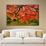 Art Walls Japanese Tree Gallery Wrapped Canvas by John Black, 18 by 24-Inch