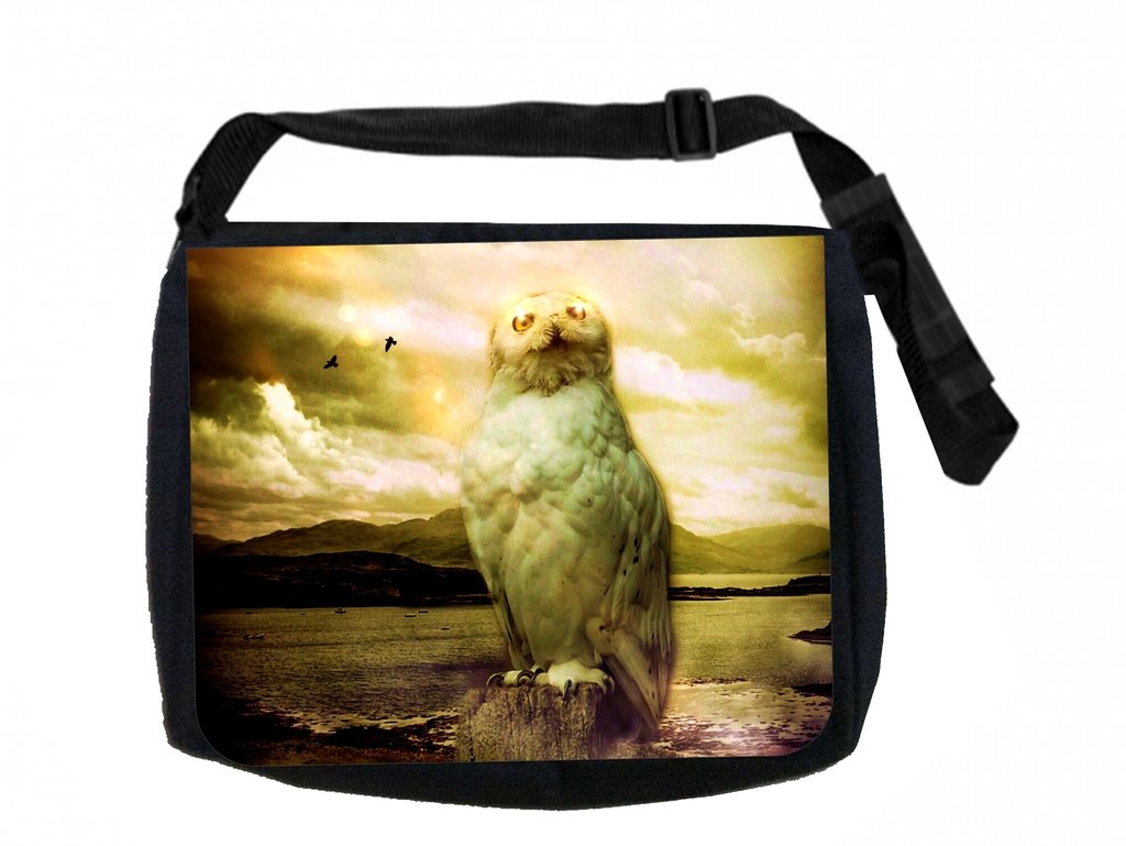Mystical Owl Max Wilder TM Messenger Bag and Pencil Case Set