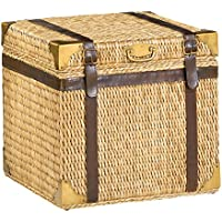 Hammary Square End Trunk in Brown