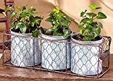 Galvanized Planters in Wire Basket. Choose From 1, 2 or 3 Planter Sets (3) For Sale