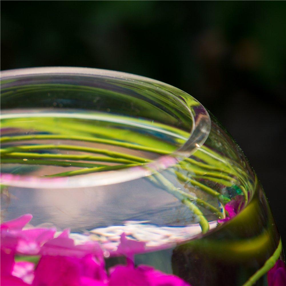 Vaso de vidrio transparente/tanque redondo de los pescados/ornamentos del vidrio de agua-A: Amazon.es: Hogar