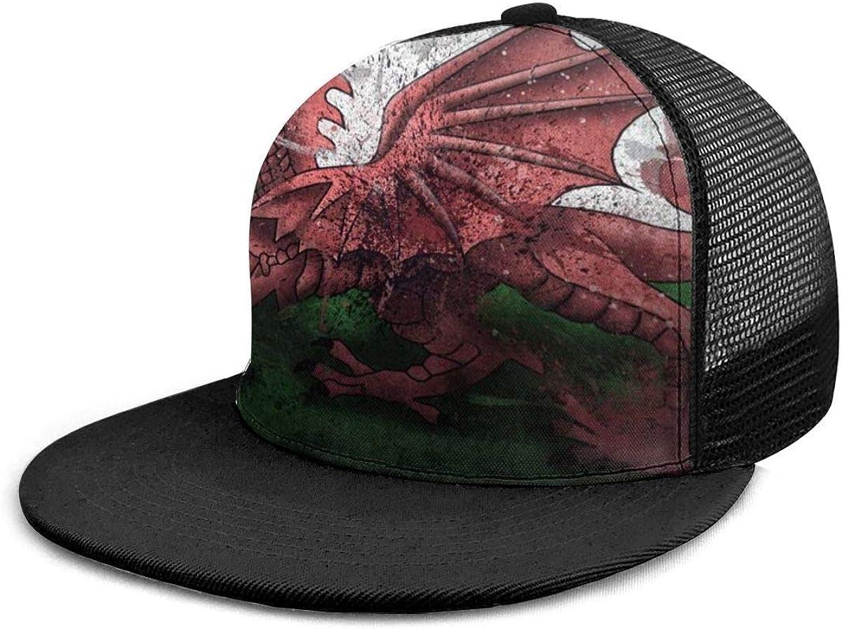 Gorra de béisbol Gales Símbolo de dragón Pinturas de la bandera Gorras de béisbol Unisex Snapback Flat Bill Hip Hop Sombreros/Sombrero