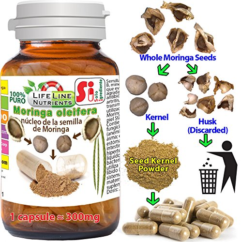 Amazon.com: Moringa Seed Kernel capsule, 160 caps (Equivalent to 240 whole seeds), FREE SHIPPING: Health & Personal Care
