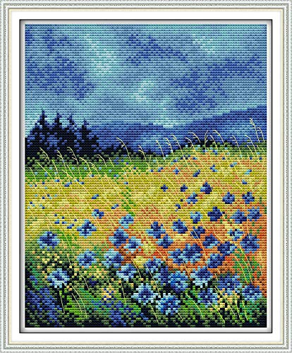 (Full Range of Embroidery Starter Kits Stamped Cross Stitch Kits Beginners for DIY Embroidery (Multiple Pattern Designs)-Beautiful)