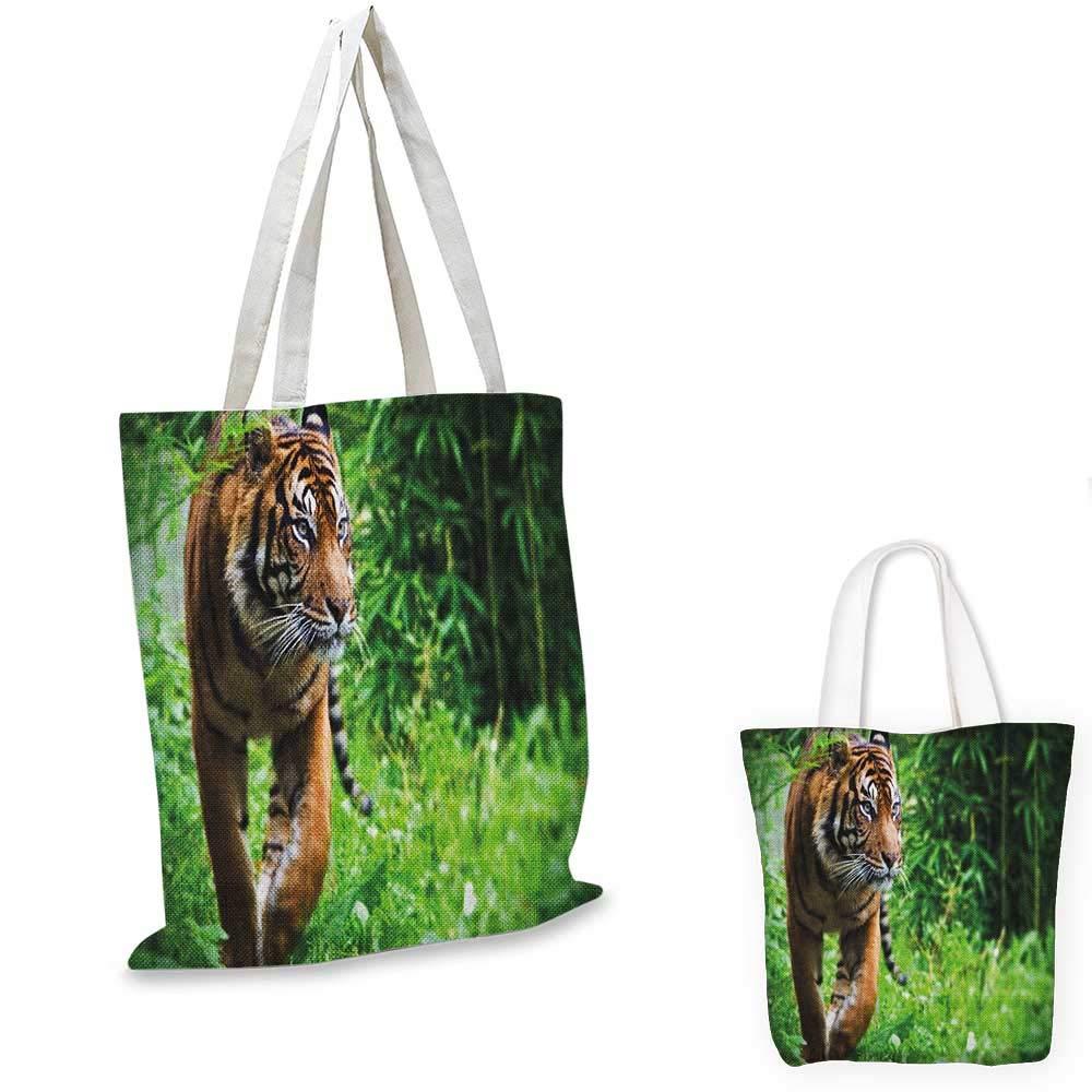 TigerClose-up of Panthera Tigris Altaica シベリアジャイアントフェラインロシアプレデターペールブラウンブラック。 14