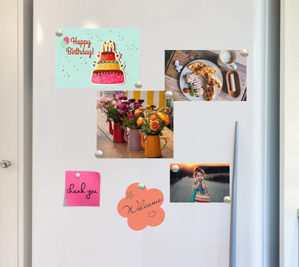 Amazon.com: Imanes para frigorífico, pequeños imanes ...