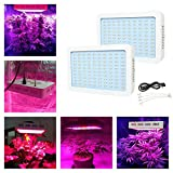 BEAMNOVA 300W LED Grow Light Full Spectrum Lamp Fixture for Greenhouse Indoor Hydroponic Grow Lighting ( pack of 2 ) Review
