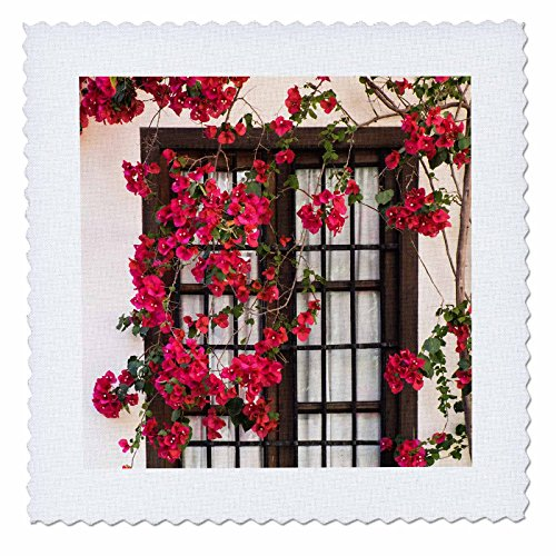 3dRose Danita Delimont - Flowers - Spain, Andalusia. Cordoba. Red bougainvillea and house window. - 12x12 inch quilt square (qs_277893_4) by 3dRose
