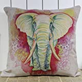 AIMTOPPY 18 x 18-Inch Decorative Vintage Square Throw Pillow Cover Cushion Case Colourful flower (For Living Room, Sofa, Etc)