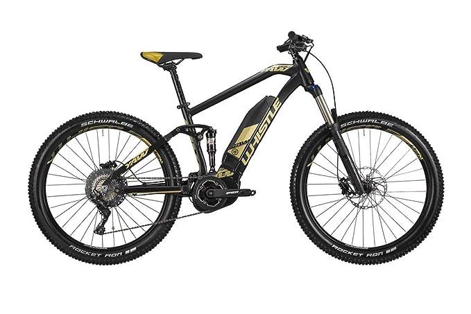 I migliori Top 10: la migliore bici elettrica per te e-bike