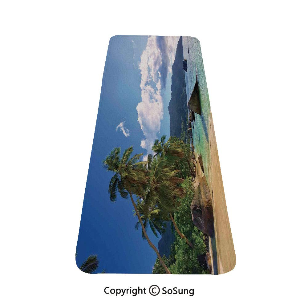 Seaside Decor Rug Runner,Tropical Beach in Mahe Island Seychelles Holiday Travel Exotic Destinations Decorative,for Living Room Bedroom Dining Room,4'x 2', by SoSung