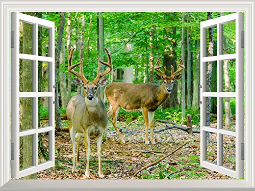 Removable Wall Sticker Wall Mural Whitetail Deer Buck in Velvet Standing in the Woods Creative Window View Wall Decor