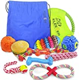Kleeger Dog Toy Set: Durable 10-Pack Puppy Toy Package With Storage Bag, Top Interactive Puppy Chewing & Teething Toys / Keep Your Dog Active & Happy Indoors & Outdoors
