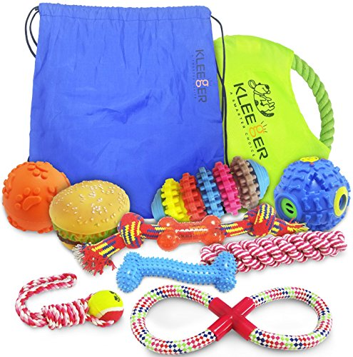 Puppy Package (Kleeger Dog Toy Set: Durable 10-Pack Puppy Toy Package With Storage Bag, Top Interactive Puppy Chewing & Teething Toys / Keep Your Dog Active & Happy Indoors & Outdoors)