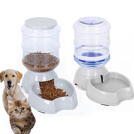 dog food feeder
