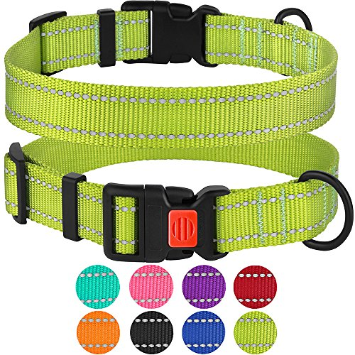 CollarDirect Reflective Dog Collar, Safety Nylon Collars for Dogs with Buckle, Outdoor Adjustable Puppy Collar Small Medium Large (Neck Fit 14-18, Lime Green)