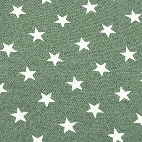 0,5 m francés de Terry Estrellas Gris-Verde 95% algodón 5% Elastano Metro 140 cm de Ancho: Amazon.es: Hogar