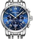 PASOY Carnival Men's Tritium Luminous Watch Automatic Mechanical Tourbillon Date Blue Dial Skeleton Watch