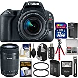 Canon EOS Rebel SL2 Wi-Fi Digital SLR Camera & EF-S 18-55mm (Black) & 55-250mm is STM Lens + 32GB Card + Backpack + Flash + Battery & Charger + Tripod Kit