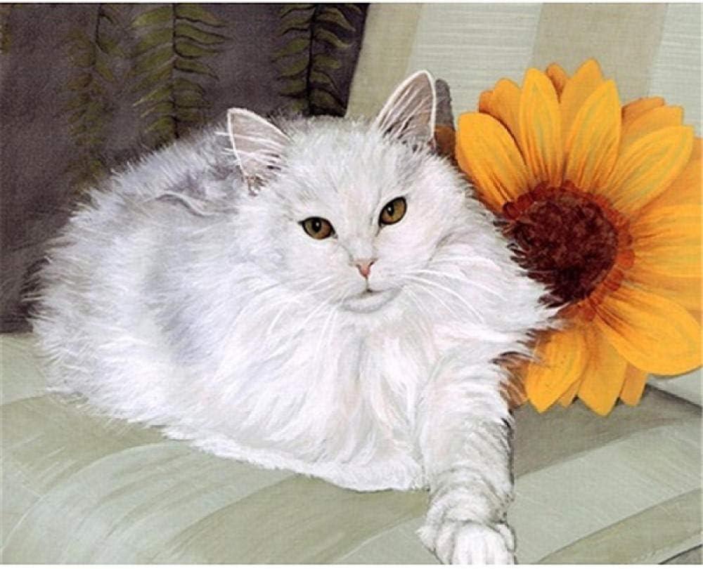 liuhaha Pintura por números Bricolaje DIY Pintura al óleo Gato Blanco Mascota Adecuado para Adultos Principiantes y niños 40x50 cm(Sin Marco)