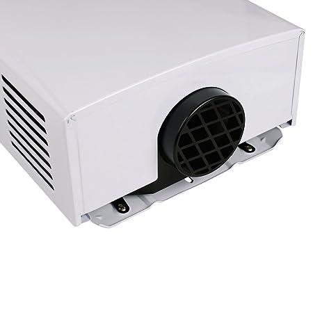 HaoBang 10 L / min Calentador de agua de gas de alta eficiencia JSD20-W01 (LPG): Amazon.es: Hogar