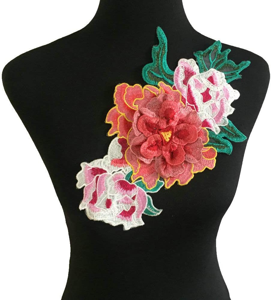 Embroidered Floral Lace Neckline Neck Collar Trim Clothes Sewing Applique Edge White A re