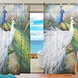 JSTEL Bedroom Decor Living Room Decorations Peacock Pattern Print Tulle Polyester Door Window Curtain Drape Two Panels Set 55x78 inch ,Set of 2