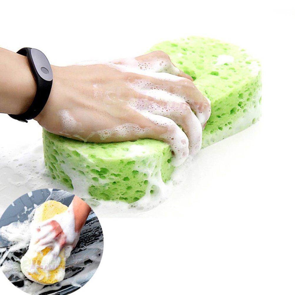 WINOMO 10 St/ück Car Wash Schw/ämme Bunte Wasch-Tool Knochen-Design f/ür Polieren Porous Car Wash Schw/ämme