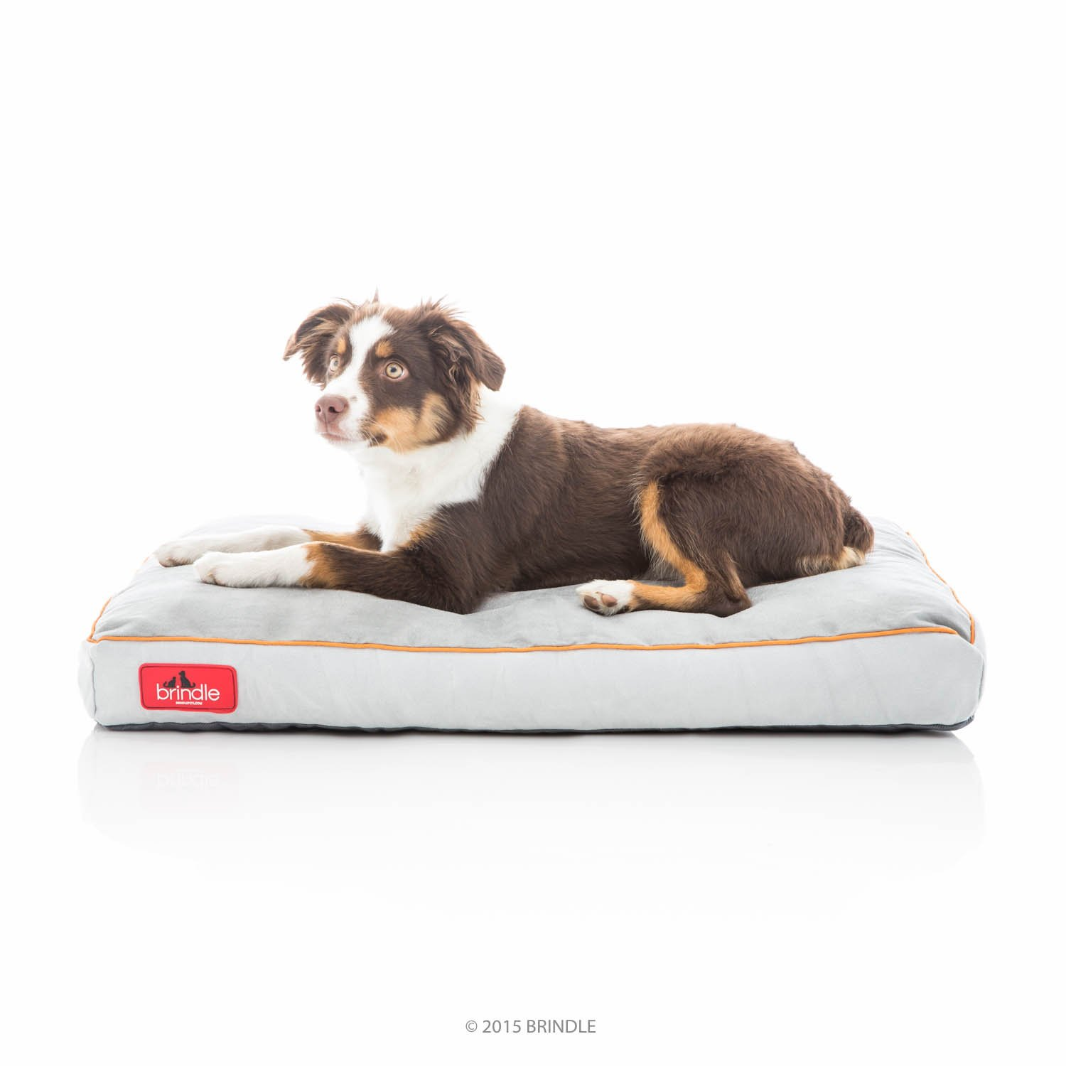 Brindle Soft Shredded Memory Foam Dog Bed with Removable Washable Cover - 28in x 18in - Stone