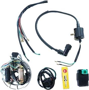 wiring diagram kick start motorcycle amazon com electrics wire harness kick start cdi dual coil  electrics wire harness kick start cdi
