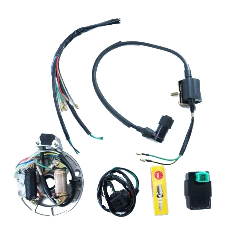Amazon.com: Electrics Wire Harness Kick Start CDI Dual Coil Magneto for  50-125cc Dirt Bike LIFAN: Automotive