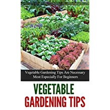 Vegetable Gardening Tips: Vegetable Gardening Tips are Necessary Most Especially for Beginners
