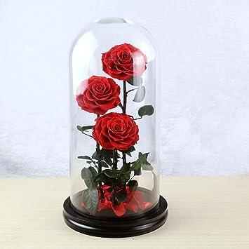Wmshpeds Eterna flor color de rosa de regalo de Navidad-Mega vidrio día de San Valentín Rose regalos emocionales: Amazon.es: Hogar