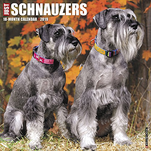 Just Schnauzers 2019 Wall Calendar (Dog Breed Calendar)
