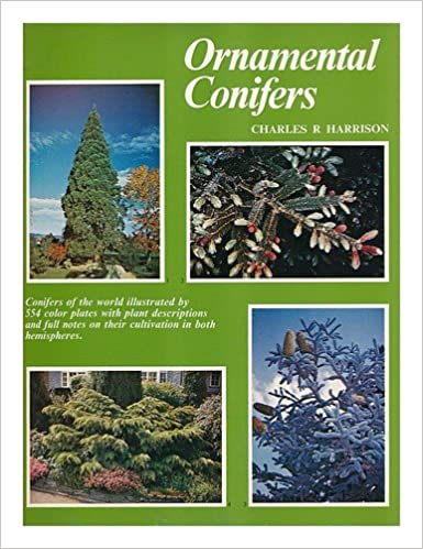 Free EPUB Book Ornamental Conifers