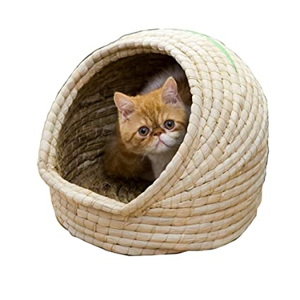 Amazon Com Cat Bed For Straw Cats A Covered Modern Cat Hideaway