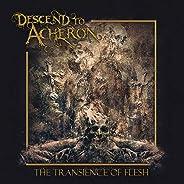 Transience Of Flesh