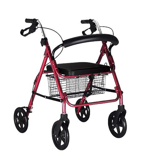Ancianos discapacitados Caminante asistido, Lucha contra la caída ...