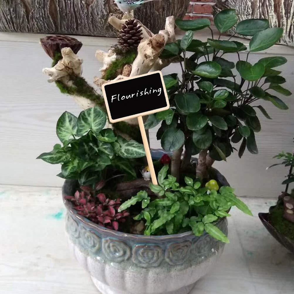 Suvox 10 minipizarras para decoraci/ón del hogar
