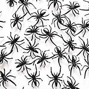 1 1/2″ Plastic Spiders, 72 Pack