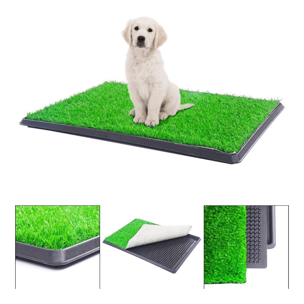 BringerPet 30''x20'' Puppy Pet Potty Training Pee Indoor Toilet Dog Grass Pad Mat Turf Patch by BringerPet