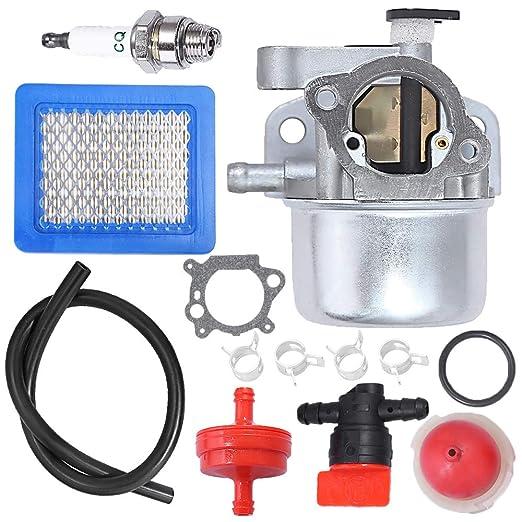 Anxingo Carburador para Briggs & Stratton 799866 790845 ...