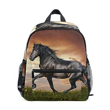 FANTAZIO Mochila Escuela Elemental Negro Caballo Bajo Sunset Bookbag: Amazon.es: Deportes y aire libre