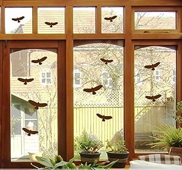 Gr B368 6 Vogel Aufkleber versch Vögel Fenster Glas Greifvogel Fensterbild