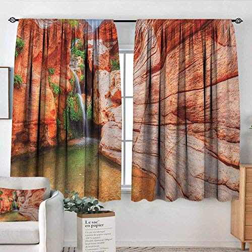 (Sheer Curtains Americana,Elves Chasm Colorado River Plateau Creek Grand Canyon Image Print, Scarlet Green Pale Brown,Decor Collection Thermal/Room Darkening Window Curtains 42