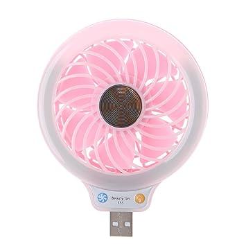 Planuik - Mini portátil con 4 luces LED para ordenador, portátil, portátil, color rosa: Amazon.es: Hogar