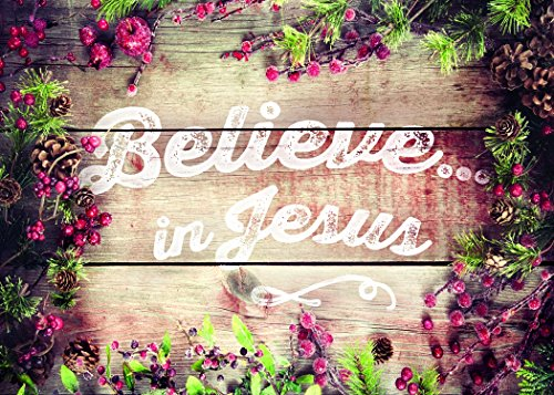 12 Boxed Christmas Cards - Believe in Jesus - NIV Scripture Included in Each Card! Bulk Religious Xmas Holiday Box Set 12 Cards & 12 Envelopes